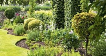 design ideal garden
