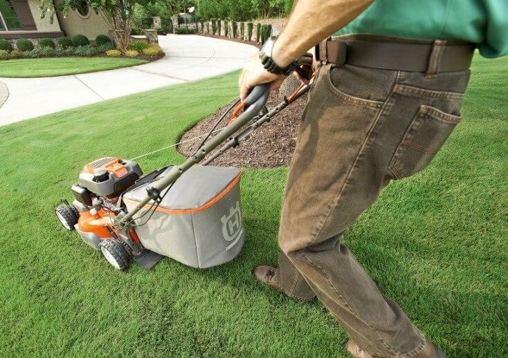 petrol lawn mower