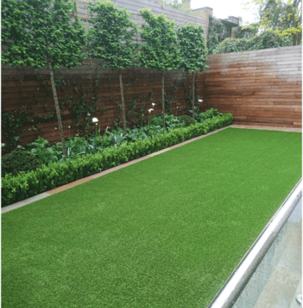 popularity of artificial grass